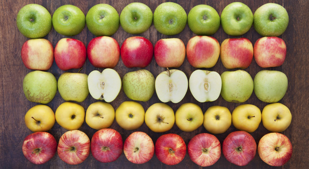 10 Facts You Never Knew About Apples