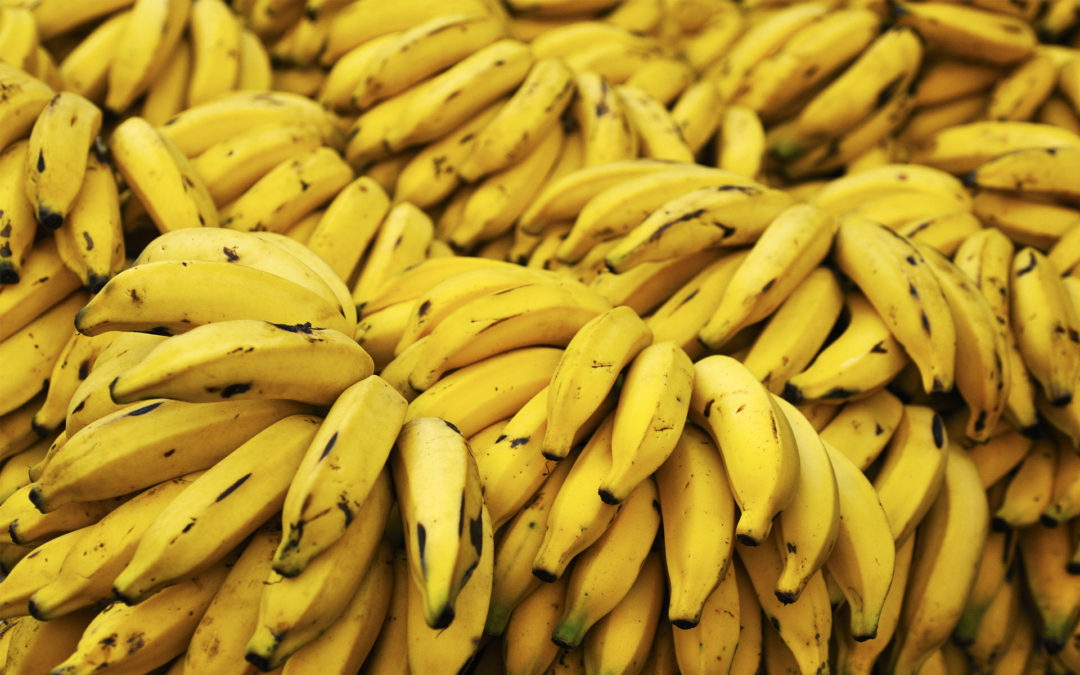 Why do Bananas go brown and ripen other fruit?