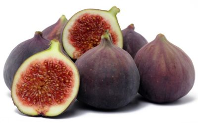 The fascinating information about of figs
