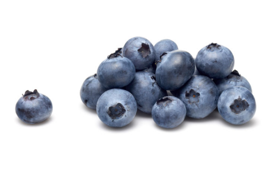 The reason why blueberries are coated in white powder?